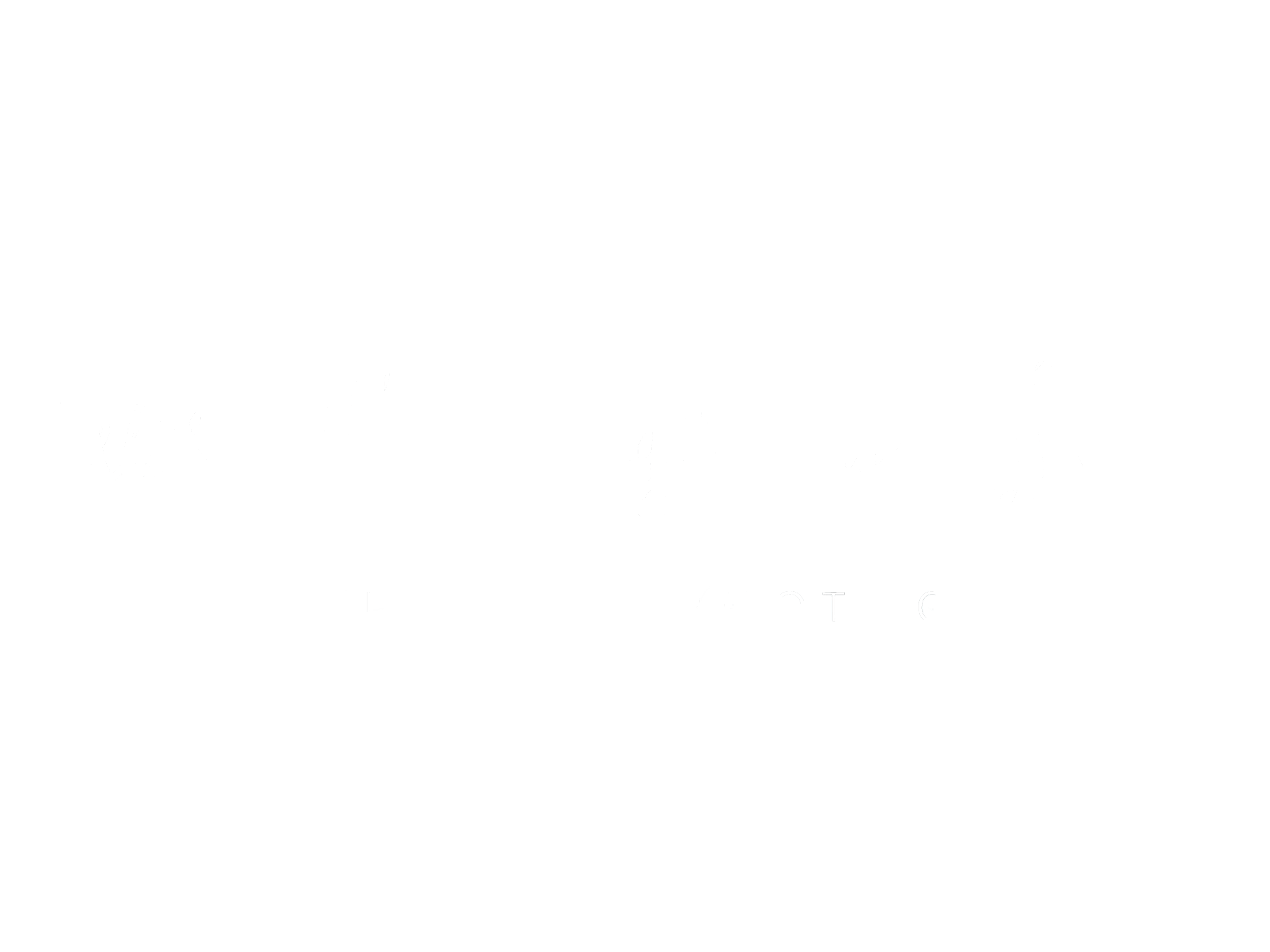Life Through A Lens (Rachel Ellis Photography)